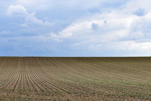 Akker landschap van