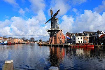Haarlem. van Marian Klerx