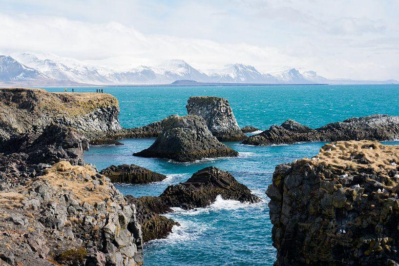 Rotsformaties bij de kust van Snaefellsnes in IJsland van Lifelicious