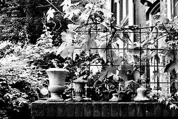 De tuin van Sidney de Graaf