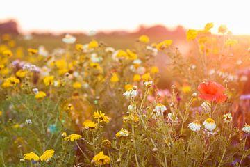 Summer Flowers van Kees vd Heijden