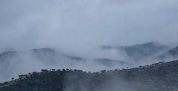 Landschap Spanje Andujar van Pascal De Munck