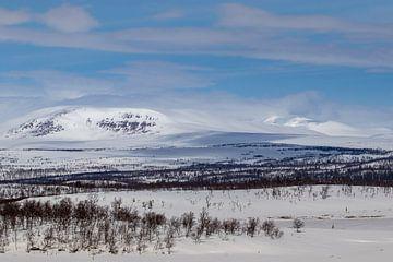 Einde winter is in zicht van Marco Lodder