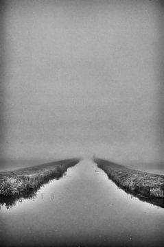 In diezige wrâld (Een mistige wereld) von Remco de Vries