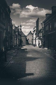 Village road (Culemborg) van