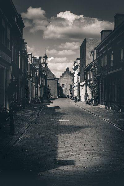 Village road (Culemborg) van Alessia Peviani