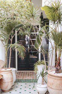 Schöner Eingang mit tropischen Pflanzen in Marrakesch, Marokko von Henrike Schenk