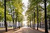 Het Lange Voorhout, Den Haag van John Verbruggen thumbnail
