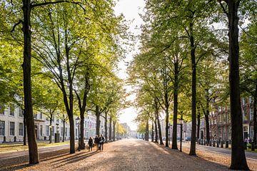 Het Lange Voorhout, Den Haag van John Verbruggen