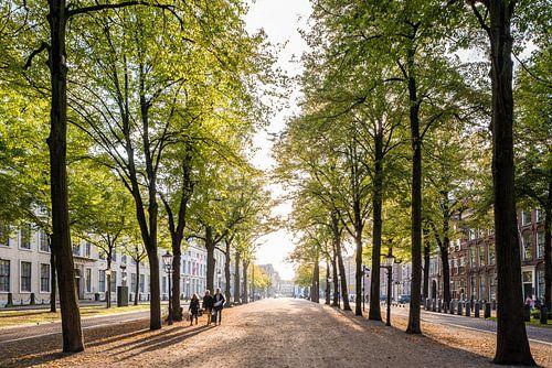 Het Lange Voorhout, Den Haag van