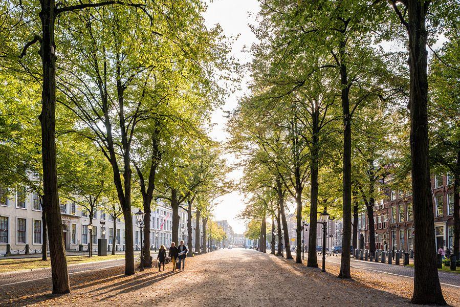 Het Lange Voorhout, Den Haag