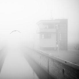 Vliegen in de mist - mist, zwart-wit fotografie van Fabrizio Micciche