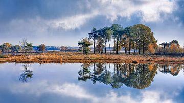 Wetland im Herbst mit dramatischen Wolken spiegelt sich in einem See von Tony Vingerhoets