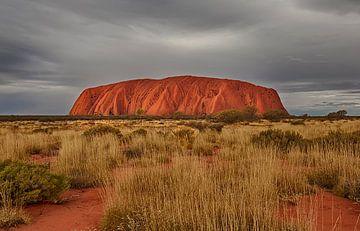 Ayers Rock - Uluru van Koos Glas