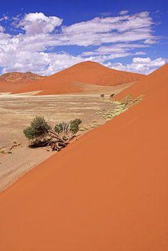 Dunes of Namibia van