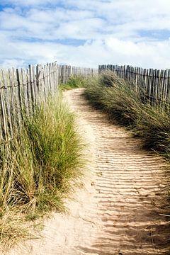Strandwandeling door de duinen van Bretagne, Frankrijk
