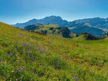 Col de Bretaye, Villars-sur-Ollon, Kanton Waadt, Schweiz, von Rene van der Meer