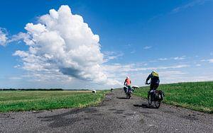 Wolkenlucht met fietsers die grazende schapen passeren op de dijk bij Striep