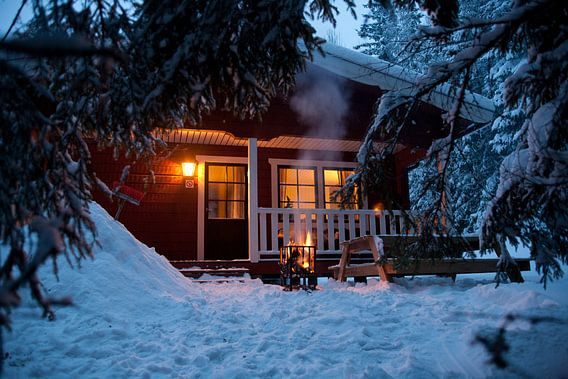 Winter in Zweden van Arthur van Iterson