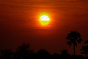 Okavango Sunset van BL Photography