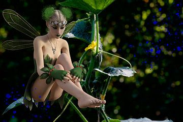 Garden Fairy with Cucumber plant - Tuin Fairy met komkommer-plant van ellenilli .