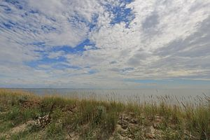 Waddenzee Ameland