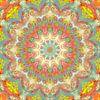 Mandala-stijl 84 van Marion Tenbergen thumbnail
