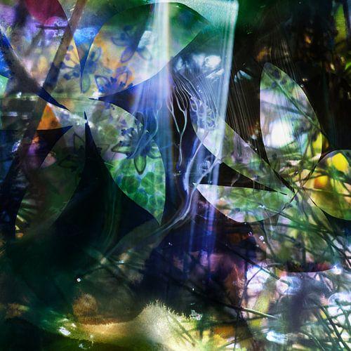 Licht in het donker van Edith Lüthi