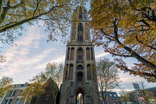 Autumn Dom Tower von Thomas van Galen