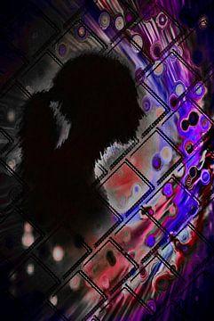 vrouw achter glas-woman behind glass-Frau hinter Glas-femme derrière une vitre-donna dietro vetro van aldino marsella