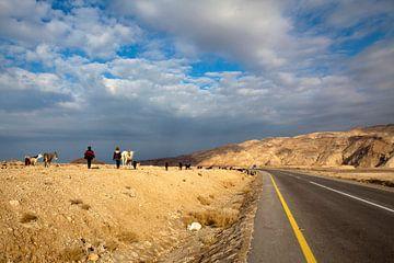 Zwei Beduinen gehen mit ihren Ziegen durch eine trockene Landschaft in Jordanien, Naher OstenZwei Be von WorldWidePhotoWeb