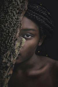 In het woud