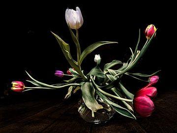 Tulpen von Els Baltjes