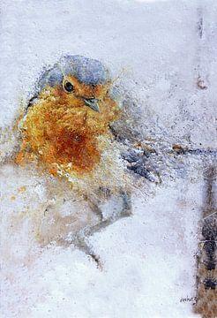 Robin von Peter van Loenhout