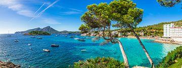 Panorama van Sant Elm, kust Mallorca, Balearen Spanje van Alex Winter