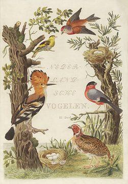 Kaft van Nederlandsche Vogelen, deel 3, Cornelis Nozeman van Teylers Museum
