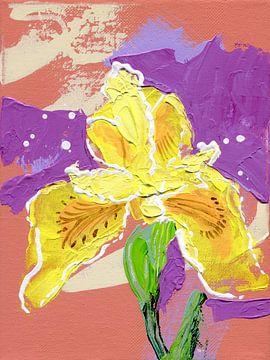 Gele lis | Iris Psuedacorus, FreeStyle van ART Eva Maria