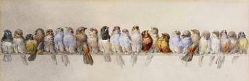 Un perchoir d'oiseaux, Hector Giacomelli