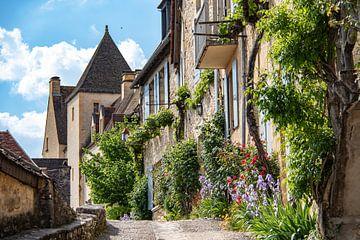 Straat in het dorp Beynac-et-Cazenac in Frankrijk van Frankrijk Puur