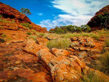 wandeling door Watarrka Nationaal Park, Australie van