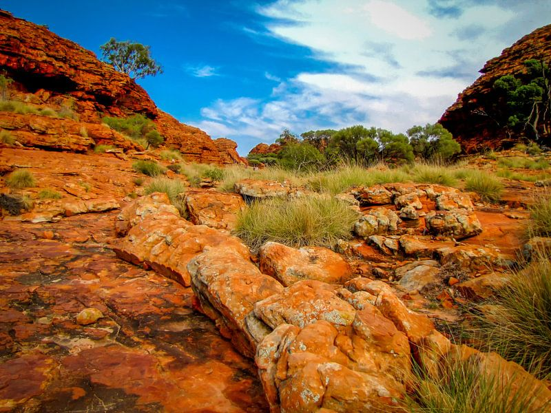 wandeling door Watarrka Nationaal Park, Australie van Rietje Bulthuis