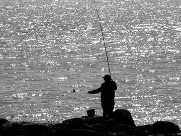 Vissen van Hans Heemsbergen