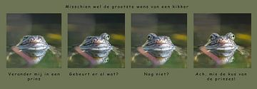De grootste  wens van een kikker van Henk Meeuwes