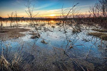Wasserlandschaft bei Sonnenaufgang von Fotografiecor .nl