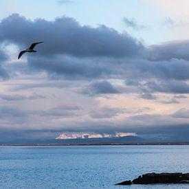 Baai van Keflavik IJsland in avondlicht van Eus Nieuwenhuizen
