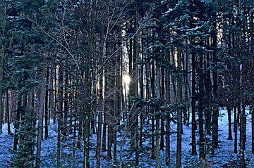 Winterzon van Leopold Brix
