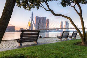 Mistige ochtend aan de Maas van Prachtig Rotterdam