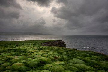 Downpatrick-Chef, Irland von Bo Scheeringa Photography