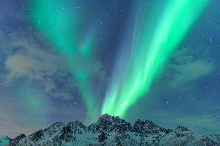 Nordlichter, Polarlicht oder Aurora Borealis im nächtlichen Himmel über den Lofoten Inseln