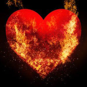 Burning love van